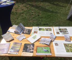 PR and info materials about partner countries at Falsterbo