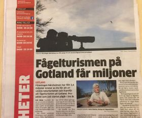 One of many, many articles about Baltic Wings in local newspapers